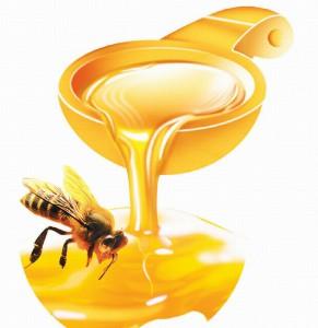 мед, прополис и маточное молочко