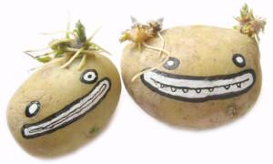 Доктор картошка