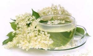 Бузина иммунитет укрепит и сахар понизит