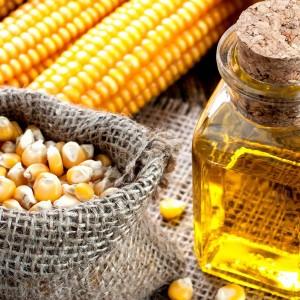 Кукурузное масло полезно для мозга