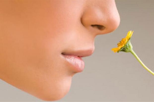 Запахи болезней