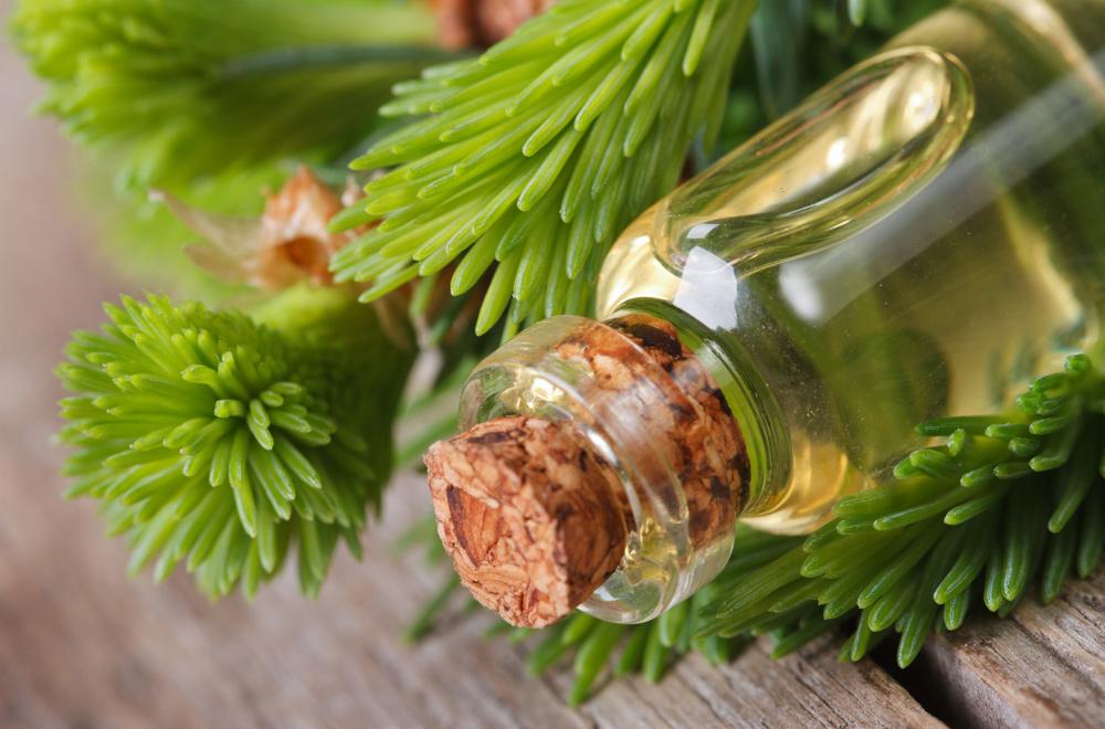 Полезные свойства масла пихты