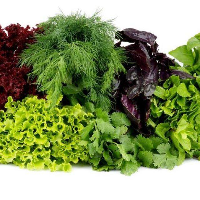 Зелень — враг вредных бактерий