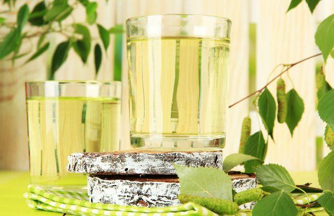 Какая польза от сока березы?