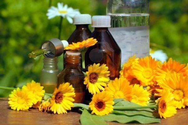 Настойка цветков календулы